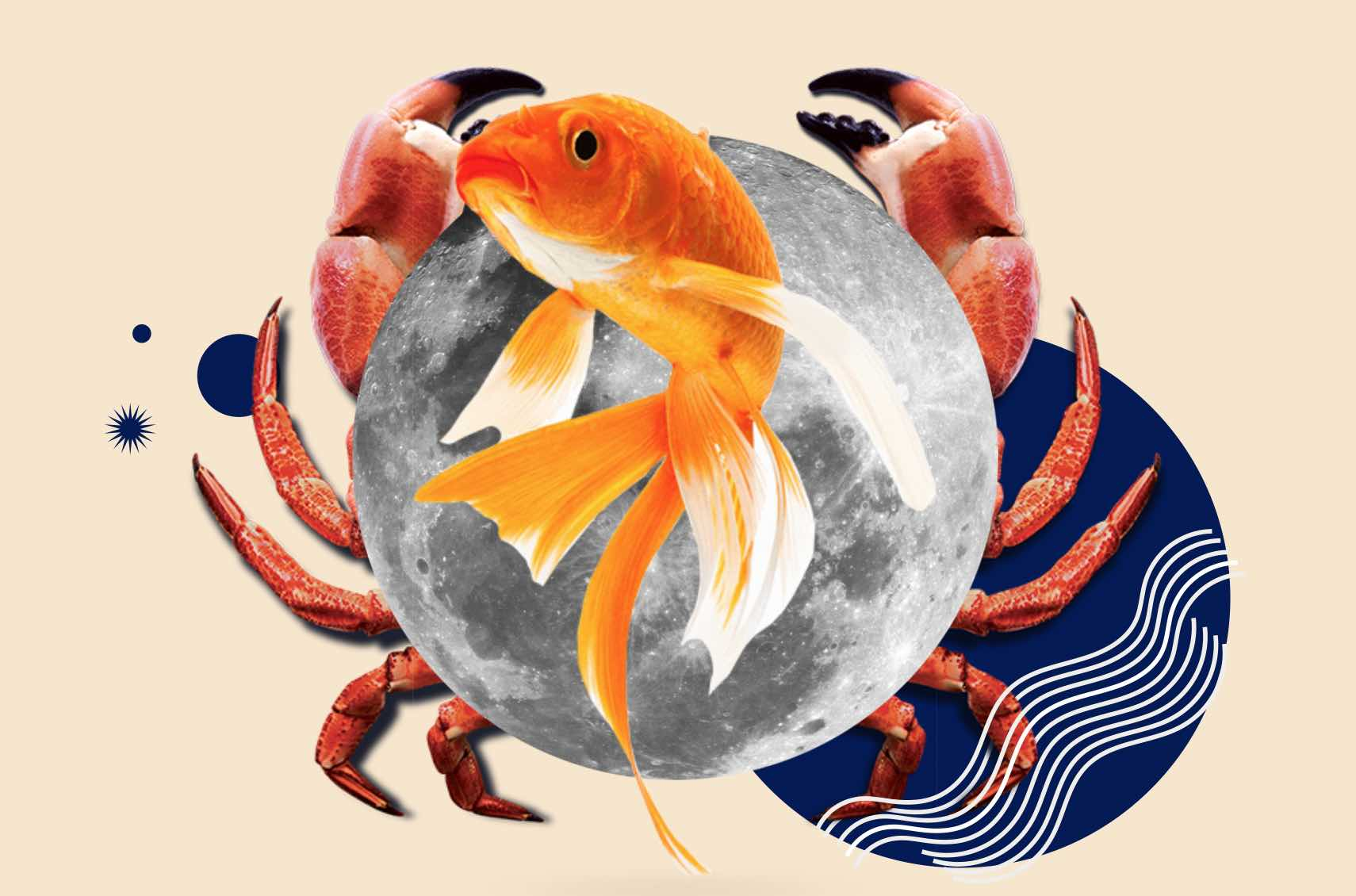 What's Your Moon Sign? | Fashion Paradoxes